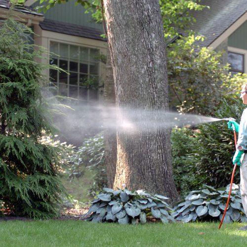 Integrated Pesticide Management Programs